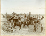 Threshing, Cavalier County, N.D.