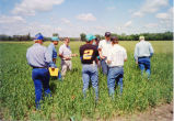Bismarck Junior College weed identification class, Bismarck, N.D.