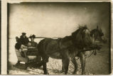 Horse-drawn sled, Pembina County, N.D.