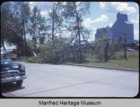 Wind storm tree damage, Harvey, N.D.