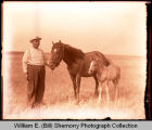 African American man with horse and colt, Northwest Williston, N.D.