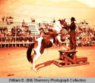 Harvey Weyrauch and trained horse sold at 4-H auction, Williston, N.D.