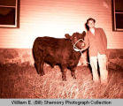 Fall Festival 1947, Tommy Judd and black angus calf, Williston, N.D.