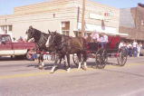 Alexander Old Settler's parade 1988, horse drawn wagon, N.D.