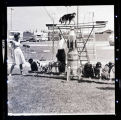 Show with dogs, Shrine Circus, N.D.