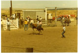 Williston MT Saddle Club rodeo, bull riding, Williston, N.D.