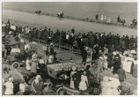 Horse racing at the Williams County Fair, Williston, N.D.
