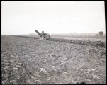 Man harvesting sugar beets in N.D.