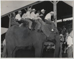 Men on elephant at Wells County Fair, Fessenden, N.D.
