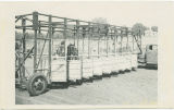 Horses behind starting gates at Wells County Fair, Fessenden, N.D.