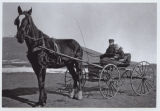 Boy and girl in horse drawn cart, probably near Rhame, N.D.