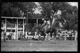 Gene Autry and his horse Champion doing tricks, Rodeo Days, Mandan, N.D.