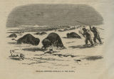 Indians hunting buffalo in the snow