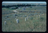 Markers on Custer Hill, Little Bighorn Battlefield, Montana