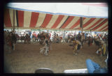 Boys dancing at Mandan Indian Cultural Powwow, Mandan, N.D.