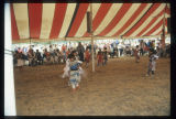 Jingle Dress Dance, Mandan Indian Cultural Powwow, Mandan, N.D.