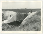 Children near the spillway of Balta Dam, Pierce County, N.D.