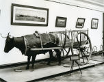 Red River Ox Cart, Liberty Memorial Building, Bismarck, N.D.