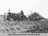 Corn harvesting in the Red River Valley