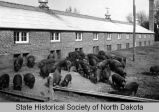 Hog house at North Dakota State Penitentiary, Bismarck, N.D.
