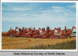 Row of Massey Harris combines, Stutsman County, N.D.