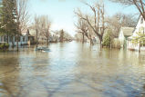 Flooded neighborhood, Grand Forks, N.D.