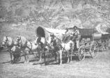 Wagon riders in Medora, N.D.