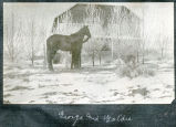 George Kline and his horse Goldie, N.D.
