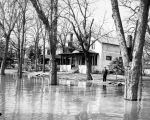 Man standing in flooded residential area, Fargo, N.D.