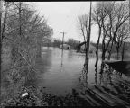 Christianson Landscape Service during flood of 1943, Fargo, N.D.