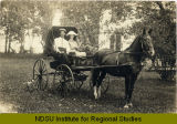 Couple in horse-drawn carriage