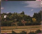Flowers, garden and trees on farm of Henry Biel, Lefor, N.D.