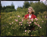 Doris Honsey, St. John, N.D. standing by bush of Prairie Roses in Int. Peace Garden.