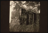 Homestead shack of Anna Koppergard, Twin Butte Township, Divide County, N.D.