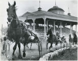 Harness racing at the Fargo fairgrounds