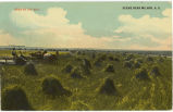 Grain by the Mile, Scene near Milnor, N.D.