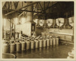 Milk cans in creamery